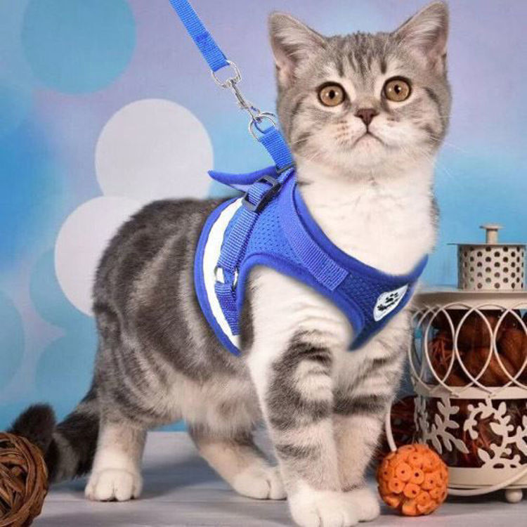 Dog Cat Harness Vest Reflective Leash