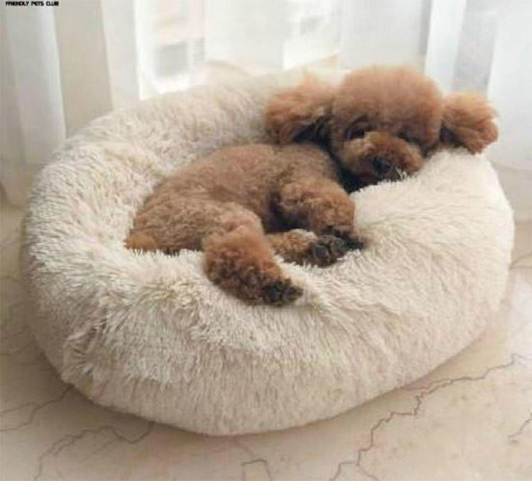 Dog Cat Soft Plush Donut Cuddler Bed