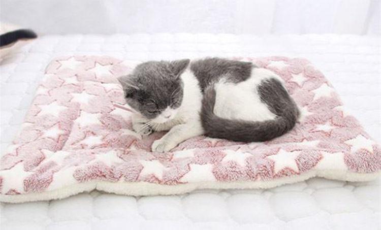 Soft Fleece Flannel Cat Dog Pad Mat Bed Cushion