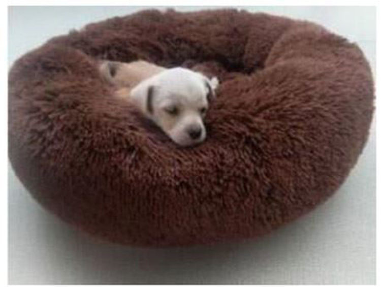 Dog Cat Soft Plush Donut Cuddler Bed Brown